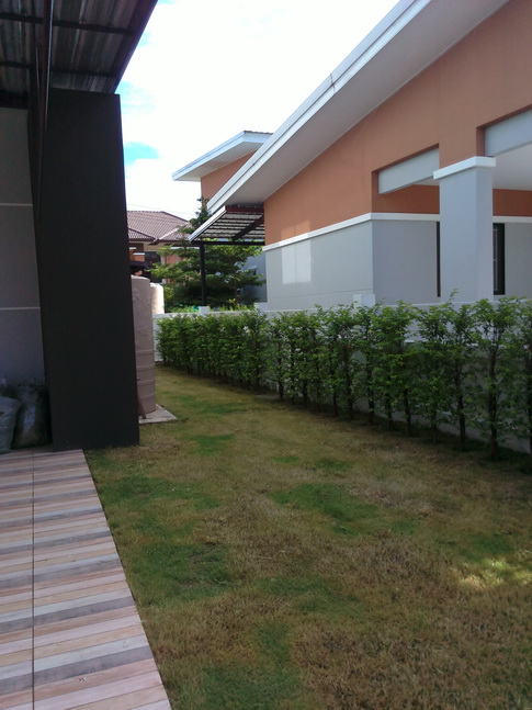 Hr5163 House For Rent In Hang Dong Chiang Mai
